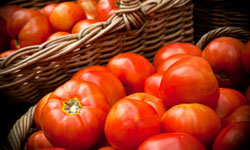 There are numerous ways to save fresh tomatoes, but sometimes the best option is to eat them. They're delicious! See more heirloom tomato pictures.