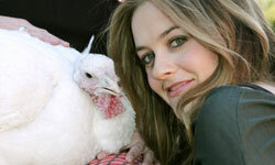 What do Alicia Silverstone and this bird have in common?