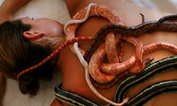 It's been said that slithering snakes are soothing to the skin.