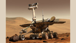 The World Cries as 'Oppy' Dies