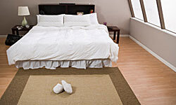 Dust mites thrive in soft carpets, so opt for wooden floors and a few scatter rugs in your bedroom.