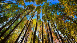 5 Things You Didn't Know About the Autumnal Equinox