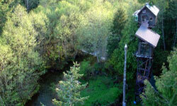 Cedar Creek Treehouse is perched about 50 feet up in a 200-year-old red cedar. It has two stories with space to sleep five, and features a sunroom, small kitchen and stunning views of Mount Rainier.