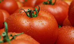 Fruit? Vegetable? Either way, it's definitely good for you. See some pictures of international tomato recipes.