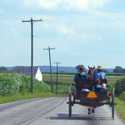 An Amish family out for a drive.