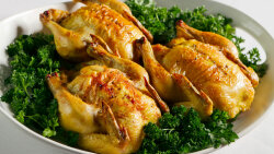The Cornish Game Hen Is Neither Cornish Nor a Hen