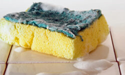 Your sponge is a breeding ground for bacteria. Don't let it fester.