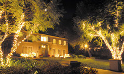 White lights will make your house really stand out -- in a beautiful way!