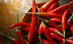 Spicy foods can clear up mucus.