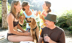 If you can't bear to leave your family pet at home, some resorts do allow small animals, though it might cost extra.