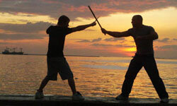 Settle your family arguments in swashbuckling style!