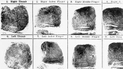 Do a Person's Fingerprints Change After Death?