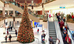 Shopping malls are not the place to be during the holidays -- and the food court could be the worst place of all. See more Christmas pictures.