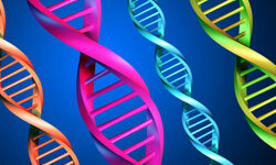 Most rare diseases are genetic and are found in a person's DNA.