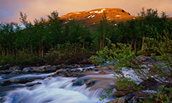 Rushing mountain brook in Laktajakka, Sweden