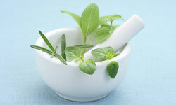 Herbs are believed to have properties that can cure cancer. Why doesn't the fda regulate herbs?