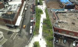 High Line Park is located in New York City.