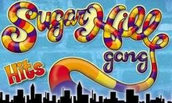 The Sugarhill Gang's Rapper's Delight was the first hip-hop song to go gold.