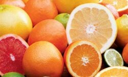 Citrus fruits may be among the causes of canker sores.