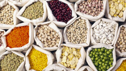 Is Lectin-free the New Gluten-free?