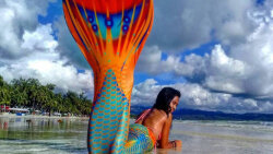 Not a Whale of a Tail: You Too Can Become a Mermaid