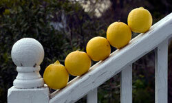 Lemons are just one of many natural exfoliants that you can find at your neighborhood supermarket. See more pictures of unusual skincare ingredients.