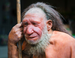 Humans Didn't Outsmart Neanderthals, We Just Outlasted Them
