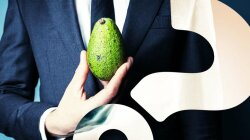 New Zealanders Deal With Avocado Crime Wave