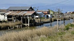 Tiny Louisiana Community Is Rapidly Vanishing Due to Rising Seas