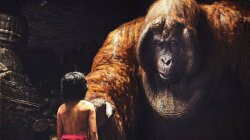 Meet Gigantopithecus, the Extinct Giant Orangutan in 'The Jungle Book'