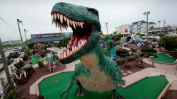 Winning the Green Windbreaker: Inside the Real World of Pro Mini Golf