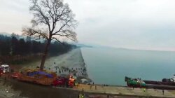 Eccentric Georgian Billionaire Takes Giant Tree for Sea Cruise