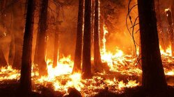 The High-tech Way NASA Spots Out-of-control Wildfires