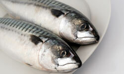 Mackerel packs all kinds of omega-3.