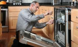 How much do you know about dishwashers?