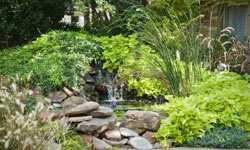Many waterfall-seeking homeowners also install ponds in their yards.