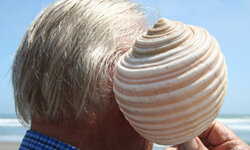 You can't use that shell to cover your ears all day; use some SPF instead!