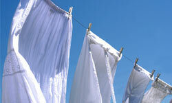 Your dirty laundry won't mind which brand of bleach you choose.