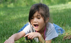 Your backyard is a treasure trove of free, natural wonders for kids to explore and observe.