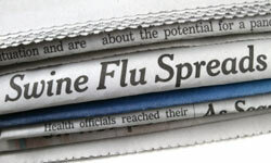 Swine flu's been dominating newsprint, Web sites and airwaves for months now.