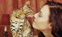 The kiss of death! (Well, for people with severe cat allergies, that is.)