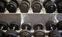 Building a gym around free weights is easy and inexpensive.
