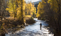 With a vista like that, is it any wonder that millions of people would rather be trout fishing?