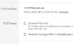 If you want, you can set your Tumblr blog to upload your posts when you send them in by e-mail.
