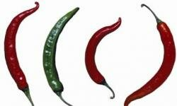 Chili peppers vary in size and spiciness. See more pictures of vegetables.