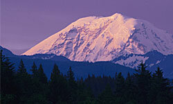 The majesty of Mount Rainier is worth a trip to Washington.