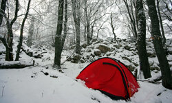 Although some campers stay indoors in the colder months, others love sleeping in the ice and snow. See more national park pictures.