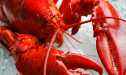 Don't pay full price for that lobster at the supermarket -- talk your way to a delicious discount!