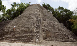 Maya Image Gallery If we're looking at a picture of Coba, Mexico, how can this city be lost? See more pictures of the Mayans.