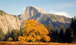 El Capitan in Yosemite is where BASE jumping got its start in 1966 and is still a favorite location because of its smooth granite face -- no outcroppings on which to hit.
